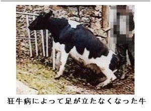 「ジョン・タイター」の予言の当たりと外れを検証!今後の日本は?