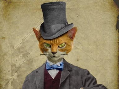 ジブリ・猫の恩返し都市伝説!アニメに隠された奇妙な裏話…