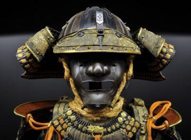 徳川将軍は15代までじゃなかった?幻の16代将軍が存在していた?